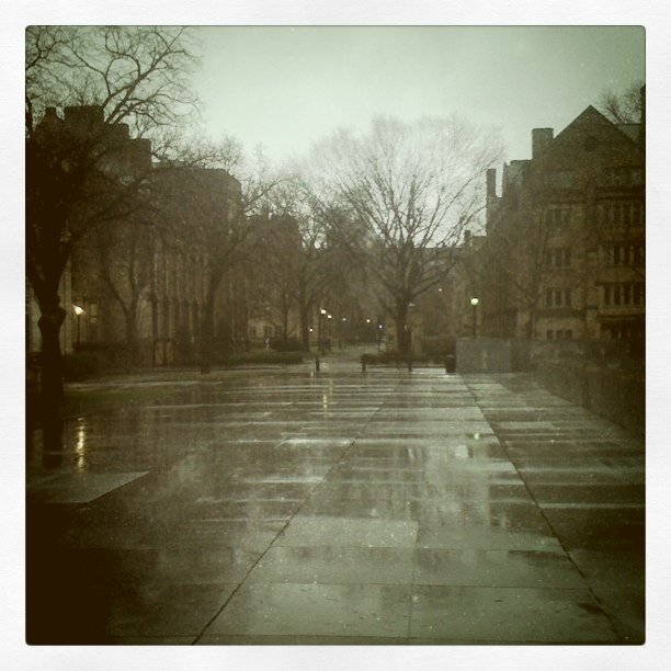 Rainboot weather on Becton plaza